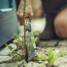 Нож для прополки Xact 1027045 - фото