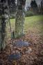 Грабли для листьев большие Solid™ 1014915 (135014) - фото