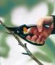 Плоскостной секатор P44 с петлей для пальцев 1001534 (111440) - фото