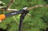 Малый контактный сучкорез L31 PowerGear™ 1000581 (112170) - фото
