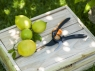 Плоскостной секатор SmartFit™ P68 1001424 (111610) - фото